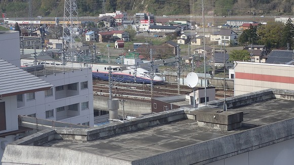P5030107.jpg