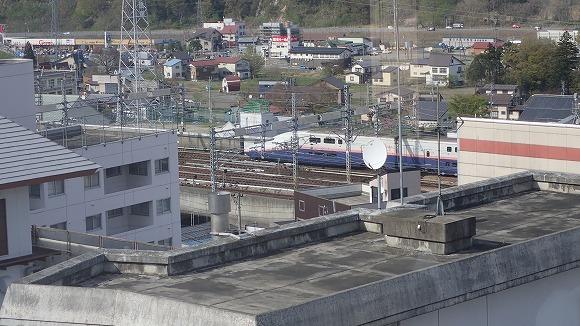 P5030110.jpg