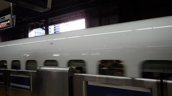 PC300478.jpg